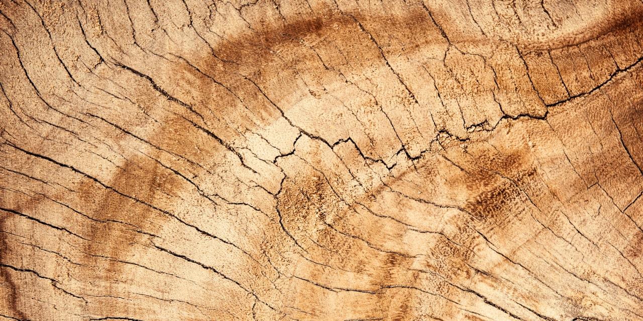 Porte Legno massello, porte in vero legno